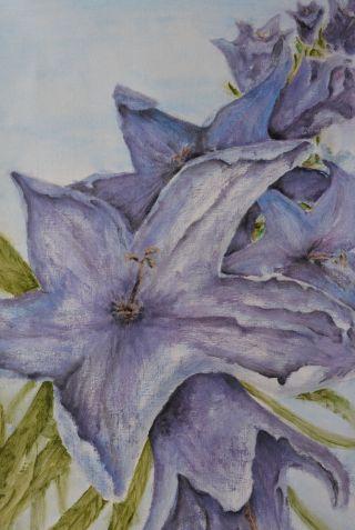 Never Knew. Annica Delfos. 40 x 60 cm. Oilpaint on primed linen.